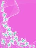 Rosa Hintergrund mit weißen Blumen Stockfoto