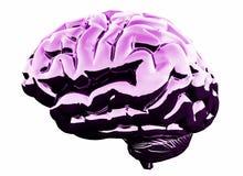 Rosa hjärna för abstrakt glöd Begrepp för konstgjord intelligens och framtids framförande 3d vektor illustrationer