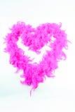 Rosa hjärta från fjädrar Arkivfoton