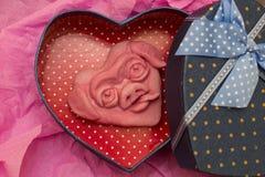 Rosa hjärta med roligt tystar ned svinet Royaltyfria Bilder