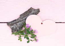 Rosa hjärta och ljusa växter av släktet Trifolium Fotografering för Bildbyråer