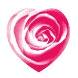 Rosa hjärtahalvton Arkivfoto