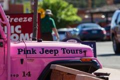 Rosa Jeep Tours royaltyfri foto