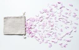 Rosa körsbärblommakronblad och liten linne hänger löst på den vita backgrouen Royaltyfri Fotografi