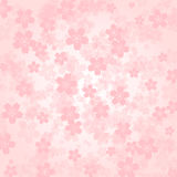 Rosa körsbärsröda blomningar för kronbladbakgrund Arkivfoton