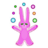 rosa kanin Fotografering för Bildbyråer
