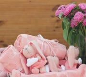 rosa kaniner Arkivfoto