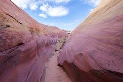 Rosa kanjon Arkivfoto