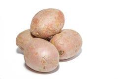 Rosa Kartoffeln Stockbild