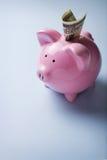 Rosa keramisches Sparschwein Lizenzfreies Stockfoto