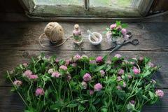 Rosa Kleeblumen, Mörser, Kleetinktur oder -infusion, Scheren und Jutefaser auf Holztisch Stockbilder