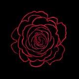 Rosa konstillustration Arkivfoton