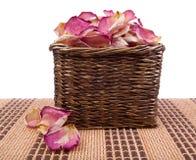 Rosa kronblad Arkivbilder