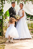 Rosa kronblad för bröllopflyg arkivbild