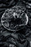 Rosa kronblad och aloe Vera naturliga ?rter och n?dv?ndiga best?ndsdelar f?r ansiktsbehandling eller ansiktsmask f?r ljus och gl? arkivfoton