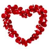 Rosa kronblad som ?r ordnade i en hj?rtaform royaltyfri foto