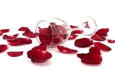 Rosa kronblad, vinexponeringsglas som isoleras på en vit bakgrund Fotografering för Bildbyråer