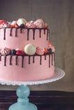 Rosa Kuchen rustikal mit Beeren, Eibischen und Makronen auf die Oberseite Stockbild