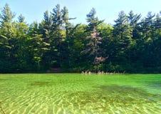 Rosa Lake Ontario sikt av genomskinlig vattenturkos för flod Royaltyfria Bilder