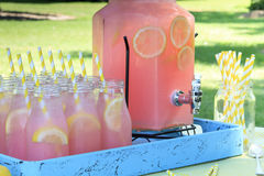 Rosa lemonad på picknicken parkerar in Royaltyfri Fotografi