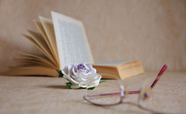 Rosa, libro e vetri Fotografia Stock