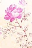 Rosa lilatapet för abstrakt begrepp Fotografering för Bildbyråer