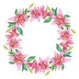 Rosa liljor Den blom- vattenfärgen blommar kransen Royaltyfri Fotografi