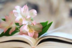 Rosa liljor på sidorna av en öppen bok arkivbilder