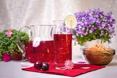 Rosa Limonade und Plätzchen Stockfotografie