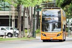 Rosa Linie Waikiki-Laufkatzen-Bus Lizenzfreie Stockbilder