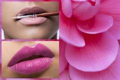 Rosa Lippen - rosa Blume Stockfoto