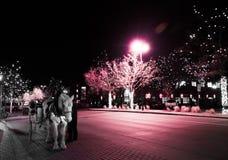 Rosa ljus för vit häst royaltyfri foto