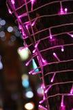 Rosa ljus i natten arkivfoto