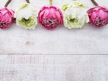 Rosa Lotosblumen auf Holztisch Lizenzfreie Stockfotografie