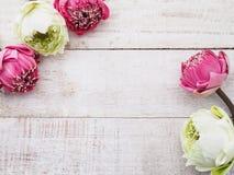 Rosa Lotosblumen auf Holztisch Lizenzfreie Stockfotos