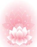 Rosa lotusblomma royaltyfri illustrationer