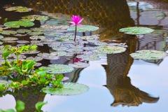 Rosa lotusblommablomma och reflexion av det traditionella en khmerfartyget Arkivbilder