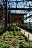 Rosa Luxemburg Garden. Newly-opened Rosa Luxemburg garden in Paris, France Stock Image