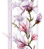 Rosa Magnolie blüht auf einem Zweig mit Schatten und vertikalen Linien O Lizenzfreie Stockfotos