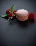 Rosa makron Royaltyfria Foton