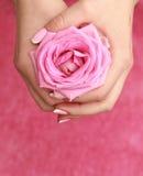 Rosa in mani delle donne Immagine Stock