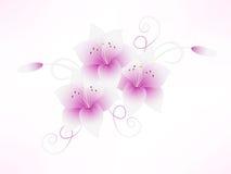 Rosa mit Blumenhintergrund mit Lilien Stockfotos