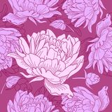 Rosa mit Blumenmuster mit Pfingstrosen lizenzfreies stockfoto