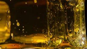 Rosa na kubku piwo zdjęcie wideo