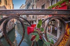 Rosa na ponte em Veneza fotografia de stock