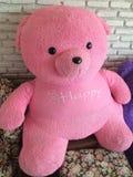 Rosa nallebjörn för leksak Royaltyfria Foton