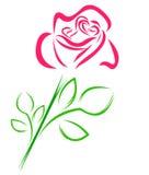 Rosa nas linhas Fotos de Stock Royalty Free