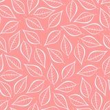 Rosa naturlig bakgrund för höst från konturer av vita sidor Sömlös dekorativ ecobakgrund Miljö- modell med blom-