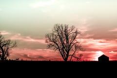 Rosa Nebraska solnedgång Fotografering för Bildbyråer
