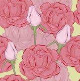 Rosa nella linea Fotografie Stock
